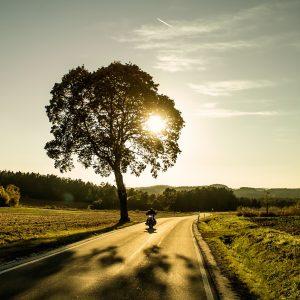 Motorrad Baum Sonne